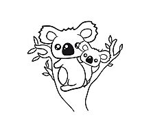 sweet little cute koala mamapapa child baby family climbs on tree eucalyptus tree Photographic Print