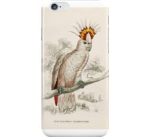 Edward Lear Parrot Prints from Natural History of Parrots  iPhone Case/Skin