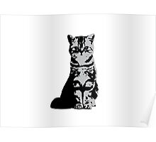 Kitty Cat (Grey) Poster