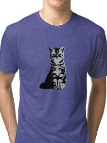 Kitty Cat (Grey) Tri-blend T-Shirt