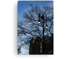 Elegant Period Lamps and Manhattan Skyscrapers Through the Tree Branches Canvas Print