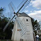 The Judah Baker Windmill  by AnnDixon