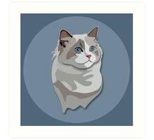 Ragdoll Kitty Cat Art Print