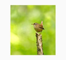 Winter Wren on Branch in Woodland Unisex T-Shirt