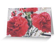 Carnation Sparkle Greeting Card