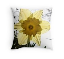 Daffodil by light Throw Pillow