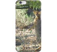 Reaching for a Snack iPhone Case/Skin