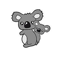 sweet little baby koala cute mamapapa child holds family itself Photographic Print