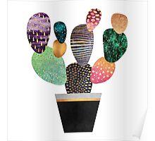 Pretty Cactus Poster