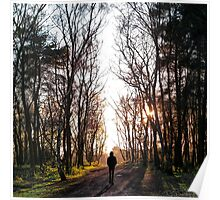 Man Walking Through the Forest Poster