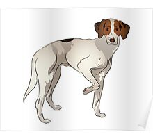 Standing Foxhound Dog Graphic Poster