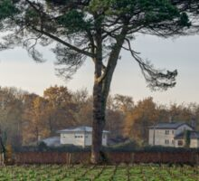 Vista on vineyards at Leognan Sticker