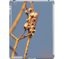 """Pussy willow""  iPad Case/Skin"