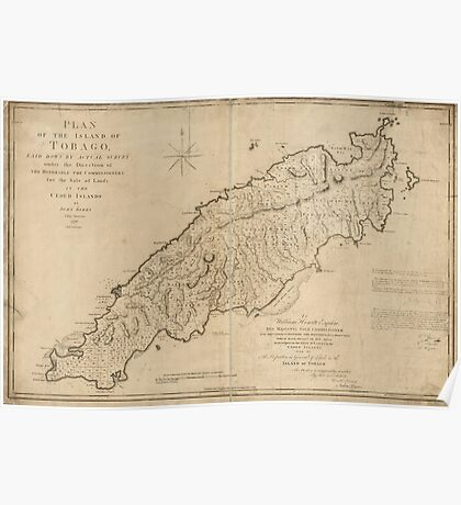 American Revolutionary War Era Maps 1750-1786 787 Plan of the island of Tobago laid down by actual survey under the direction of the Honorable the Poster