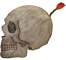 Betrayal-A skull Bomb with a flower fuse Photographic Print