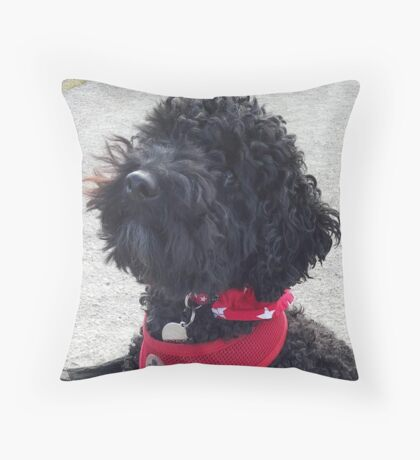 Stanley the little Black Cockapoo Throw Pillow