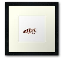 lonely bee Framed Print