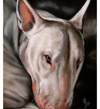 Bull Terrier Dog Hund Bully Sticker