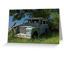 Lonely Landy Greeting Card