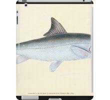 The Natural History of British Fishes Edward Donovan 1802 117 iPad Case/Skin