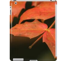 Red leaves in Autumn iPad Case/Skin