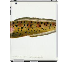 The Natural History of British Fishes Edward Donovan 1802 045 iPad Case/Skin