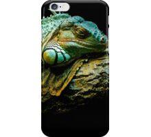 lizard face edmonton zoo iPhone Case/Skin