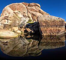 Barker Dam, Joshua Tree National Park. by Graham Gilmore