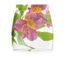 Alstroemeria Flowers Mini Skirt
