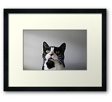 Two Tone Lucy Framed Print