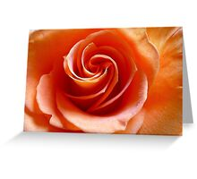 Creamsicle Swirls......... Greeting Card