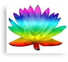 Rainbow Water Lily - beautiful lily for stickers, tees and hoodies Canvas Print
