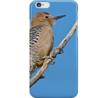 Male Gila Woodpecker iPhone Case/Skin