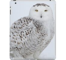 Apple of my eye iPad Case/Skin