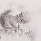 Squirrel - 20150801 by JulieWickham