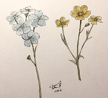 Forget Me Not + Buttercup Cuts by booklils