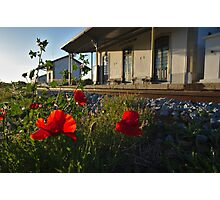 Poppy flowers in front an old train station Photographic Print