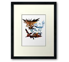 Legendary Birds Framed Print