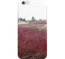 Winter Brush ~ Texture and Pattern iPhone Case/Skin
