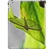 NS Resting Unknow Wings© iPad Case/Skin
