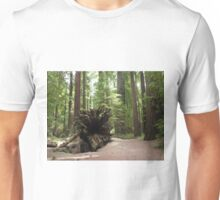 2015 Avenue of the Giants Stump  Unisex T-Shirt