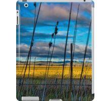Landscape: wind turbines across a dry lake iPad Case/Skin