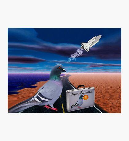 "☞ º°""˜`""°☜♥☞ PIGEON IMPOSSIBLE >PILLOW,PICTURE,TOTE BAG-VARIOUS APPAREL ☞ º°""˜`""°☜♥☞ Photographic Print"