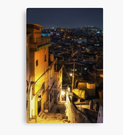 S(e)oul alley Canvas Print
