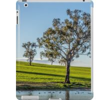 A tree scene iPad Case/Skin