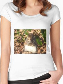 New Fur-iend. Women's Fitted Scoop T-Shirt