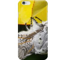 Furry Puss Moth on yellow Tulip iPhone Case/Skin