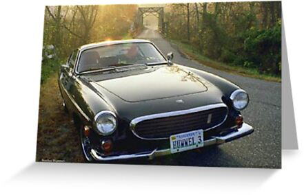 Volvo P1800E by GreenSaint