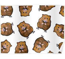 Hamster Pattern: Hamsters on White: Illustration Poster