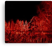 Red woods with a.... Canvas Print